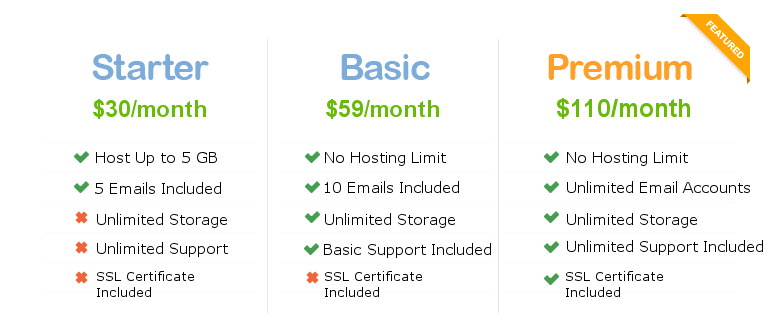 website hosting pricing table